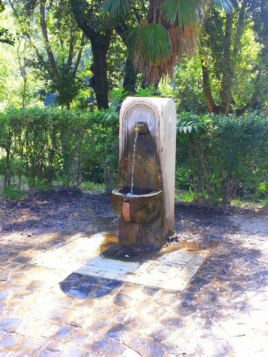 beber-agua-gratis-em-roma-2